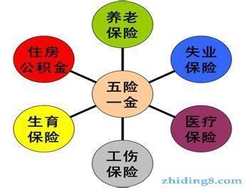 湛江社保公积金代理流程