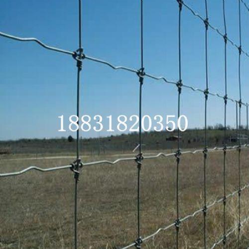 养殖牛栏网,草原网价格,优质牛栏网