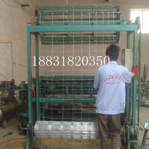 牛栏网,养殖网,养殖牛,羊防护网,牛栏网价格