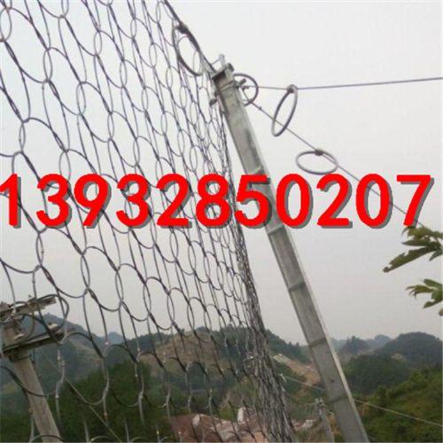 河北信誉最好的柔性被动RXI-200边坡防护网厂家