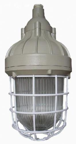 BAD82(一体式防爆灯)防爆泛光灯-L150W