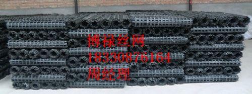 钢塑网 安全网土工网矿用土工格栅