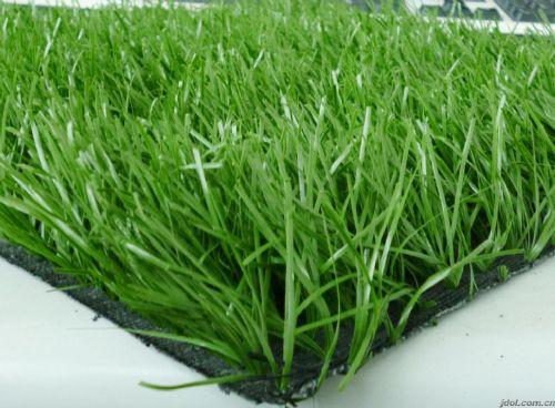 塑料草皮出售北京人造草坪厂