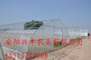 批发建造温室大棚,几字型钢温室大棚,销售大棚配件,大棚骨架