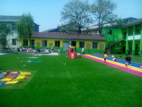 幼儿园跟半圆有关的小动物