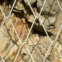 安平 冠成丝网 边坡防护网