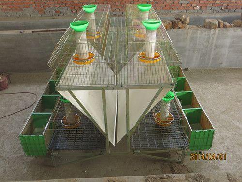 自动化品字形阶梯子养殖兔笼 新型兔笼