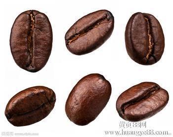 进口哥斯达黎加咖啡豆成都上海报关资料,进口咖啡豆报关资料