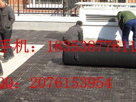 安徽塑料排水板%HDPE排水板安庆排水板%蓄排水板