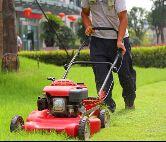 割草机剪草坪