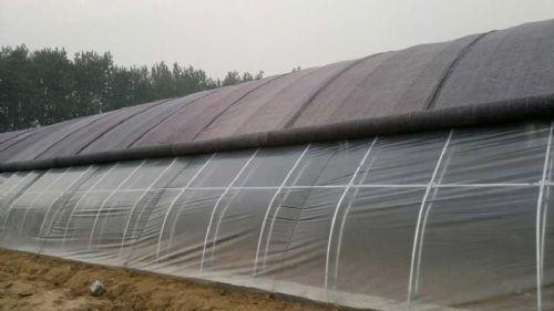 专业温室大棚建造 博爱温室大棚建设骨架安装技术一流