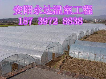 新乡塑料薄膜蔬菜大棚施工方案 朔料大棚建造成本
