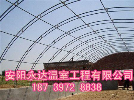 陕西 西安建造双梁钢架温室的好处 大棚骨架安装成本