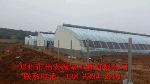 开封几字钢大棚建设厂家郑州光宏质量可靠