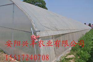 最新大棚保温被批发价格,蔬菜大棚保温被的报价及好处