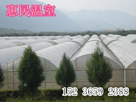 山西太原温室大棚厂家 临汾温室大棚覆盖材料