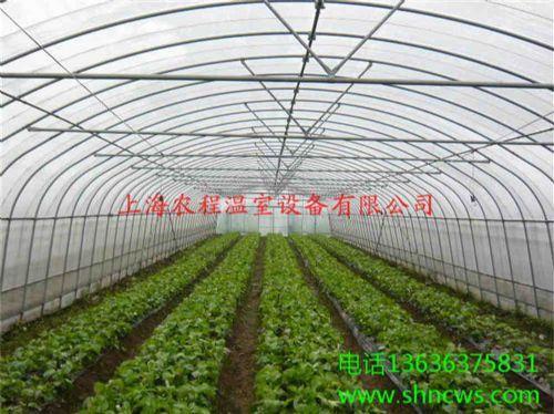 单体钢管大棚 大棚骨架销售 河南温室大棚销售 上海农程