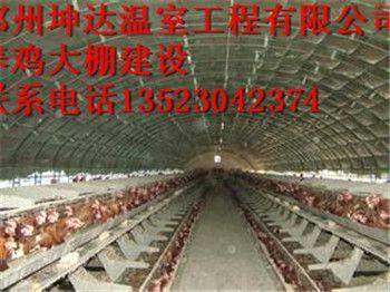 阳泉塑料养鸡大棚建设公司大棚建设实施方案