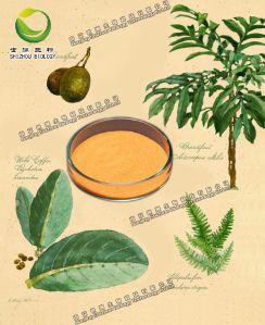 虫草素,纯天然植物提取物,厂家现货直供