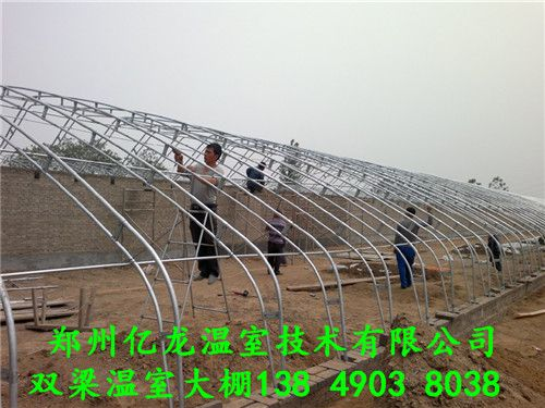 建造日光温室的设计方案及大棚施工厂家