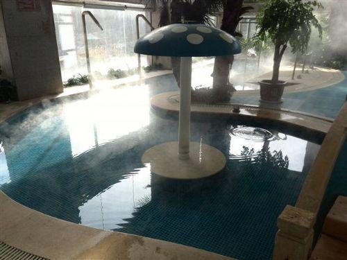水处理设备 泳池 游泳池 泳池净化水设备 消毒设备