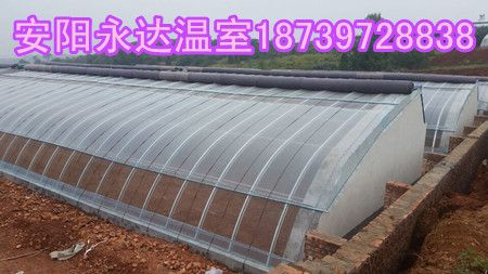 巩义新型温室大棚骨架制作材料几字钢蔬菜大棚建造商
