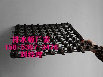 唐山车库排水板+2公分排水板厂家-现货供应