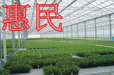 新型节能日光温室大棚技术 养殖大棚设计制造