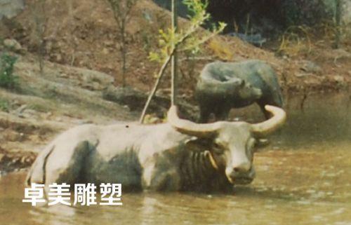 湖北动物雕塑厂