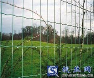 荷兰网厂家直供工地施工荷兰网规格1.8×30m