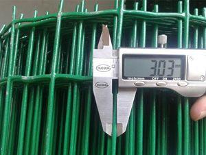 荷兰网  浸塑电焊网生产厂家