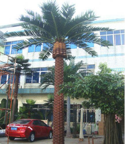 仿真加纳利海藻树