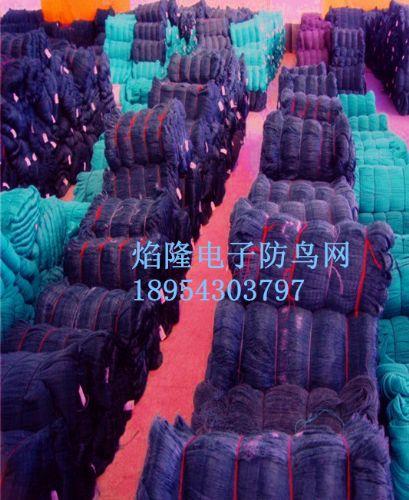 果园斑鸠网防鸟网捕鸟网机场防鸟网麻雀网聚乙烯防鸟网