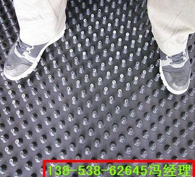 甘肃ps蓄排水板/种植屋面蓄排水板作用