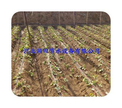 大棚温室灌溉PE管|喷灌设备|滴灌管