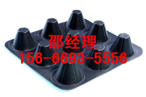 沧州排水板河北厂家销售