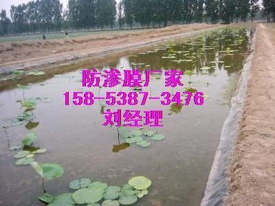 供应怀化莲菜种植专用防渗膜‖防水布价格