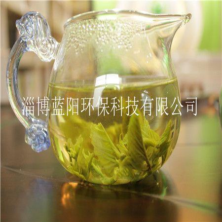 山东天然健康养生桑叶茶
