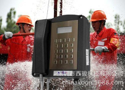 工业防爆话站,可接入程控交换系统的防爆电话