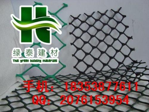 江苏养鸡塑料网专用—连云港高强土工网—防洪围栏现货