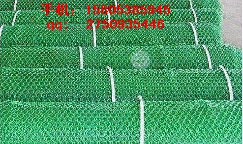 衡水塑料平网_塑料过滤网_路基网@现货销售