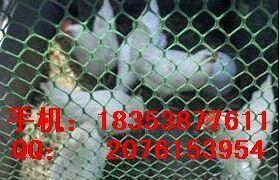 安徽塑料养殖网平网~厂家~安庆安全围栏护栏PE网格隔离网价格