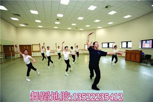 欧氏芭蕾舞蹈地胶,舞台专用地板,舞蹈房地胶