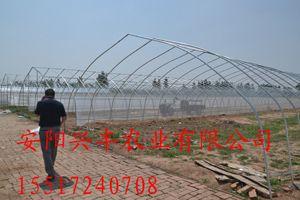 香菇种植大棚建造,建设生态餐厅、pc阳光板温室(图)