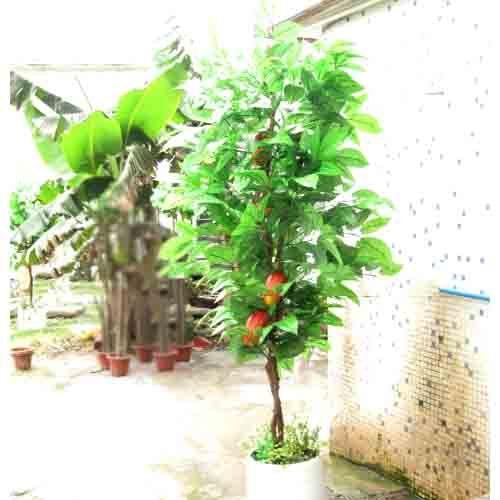仿真可可树 咖啡树 山楂树 各种仿真树皆可定做