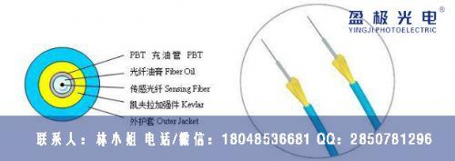 非金属充油管型测温光缆 PBT充油管温度感测光缆
