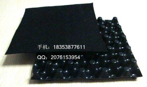 淮北楼顶种植排水板~蓄排水板厂家~亳州2公分排水板抗撕裂