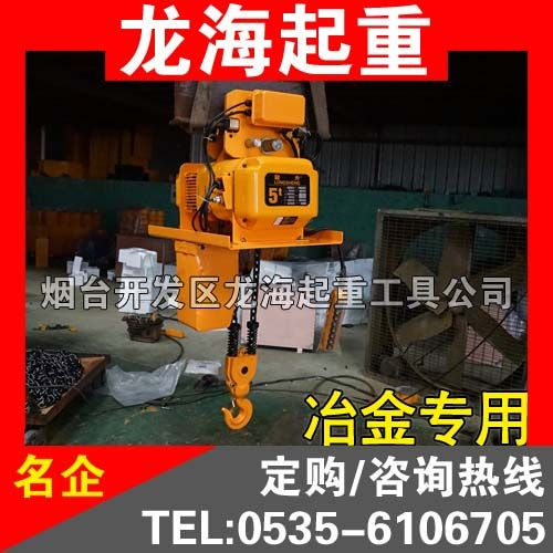 1T/2T/3T/5T冶金电动葫芦 铸造专用环链电动葫芦 宁波