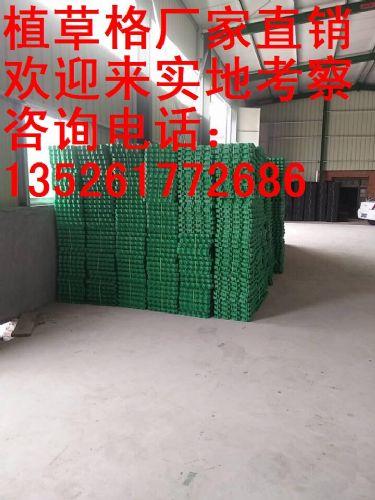 绍兴植草格生产厂家
