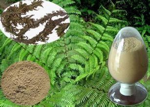 工厂供应石杉碱甲 1~98% 医药原料